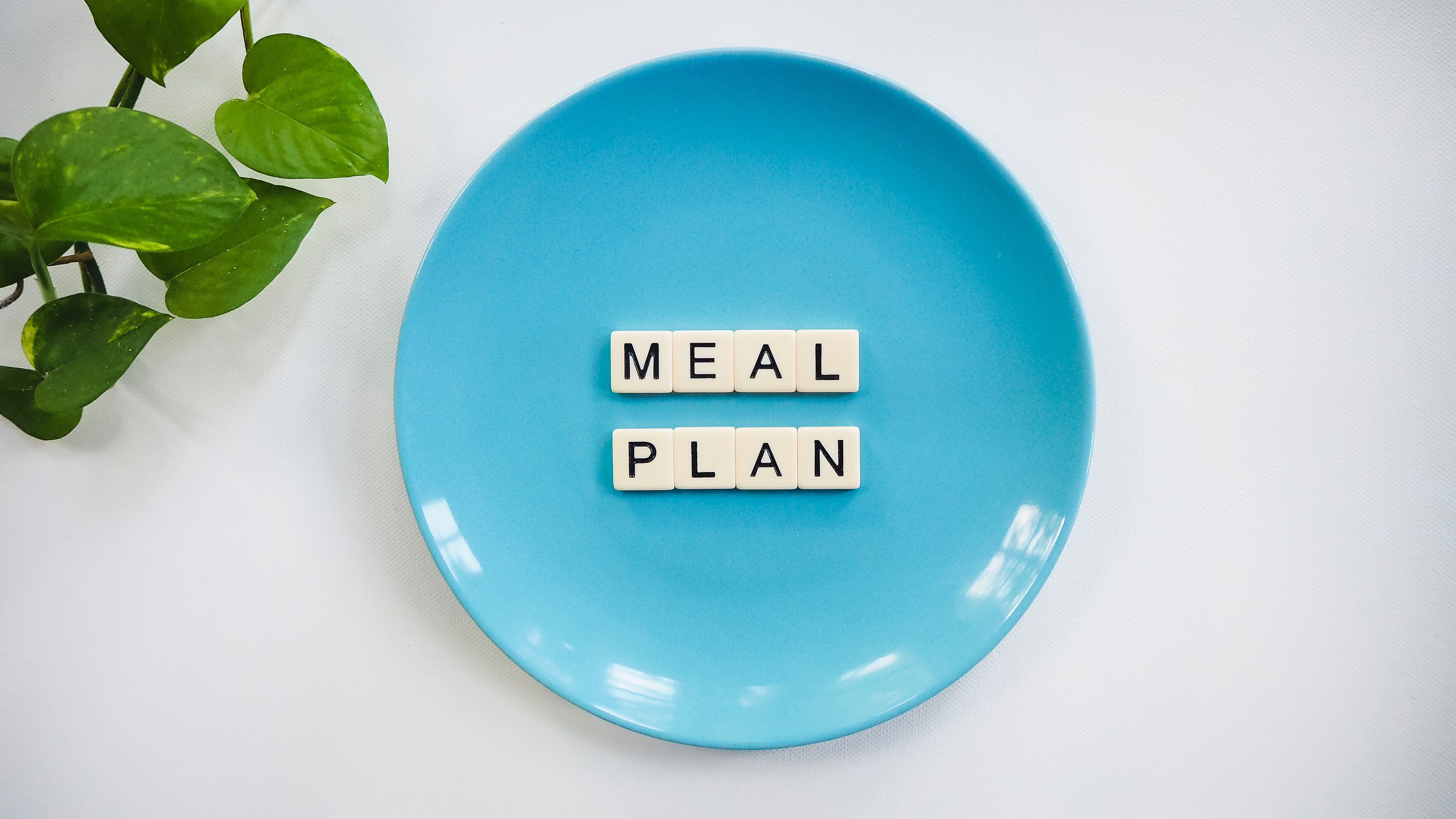 Tips to picking a diet plan