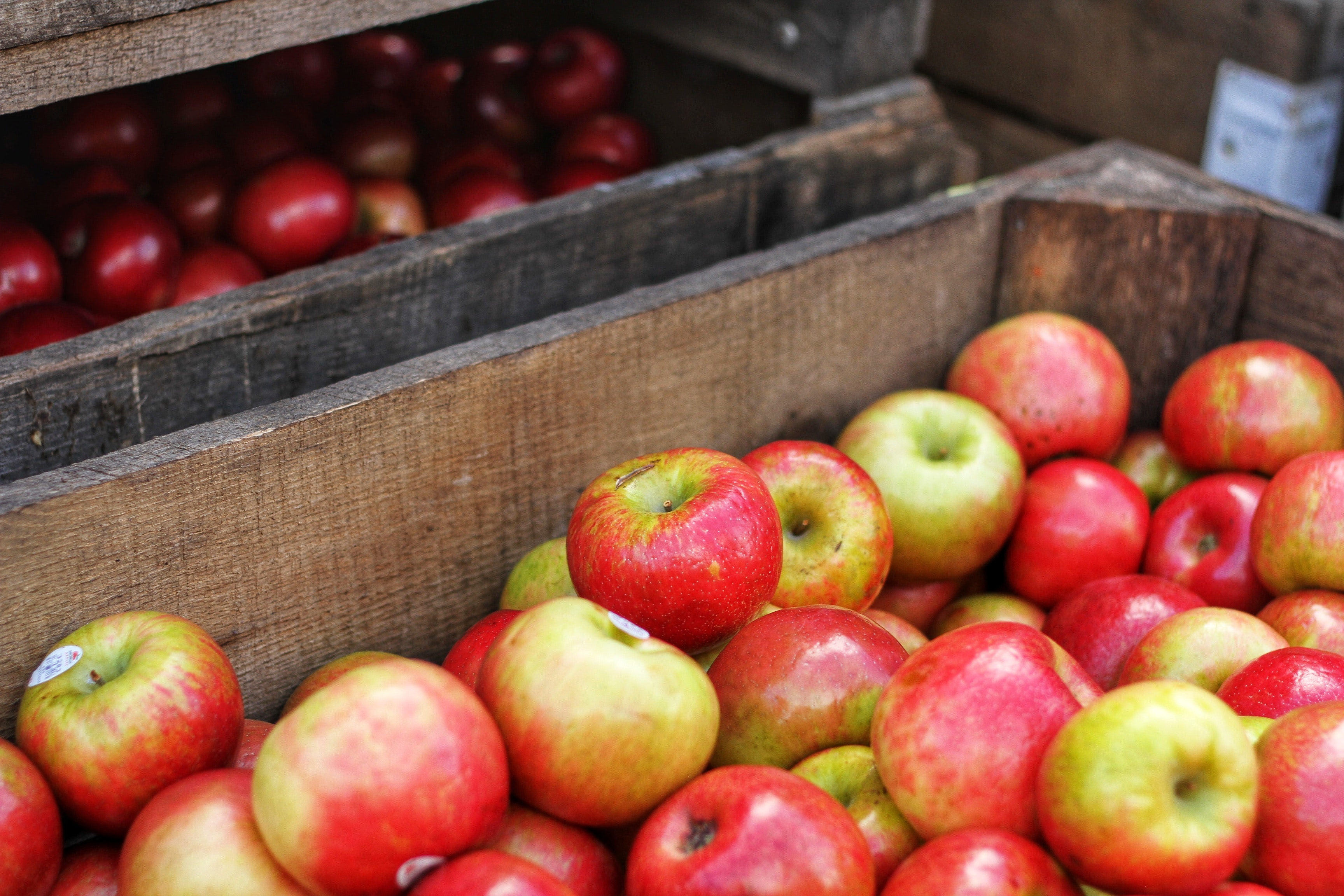 Apples are packed with substances that have so many advantages for your health and vitality.